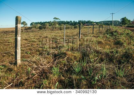 Detail Of Barbed Wire Fence With Meadows And Trees On Rural Lowlands Called Pampas Near Cambara Do S