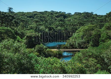 People Walking Over Wooden Bridge Through Forest At The Aparados Da Serra National Park Near Cambara