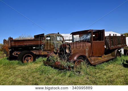Several Old Rusty Salvaged Trucks Are Left In A Junkyard For Scrap Metal And Parts.