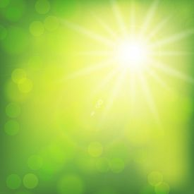 Shining Sun On A Blurry Green Background With Bokeh. Spring Background. Rays Of Light On A Yellow Li