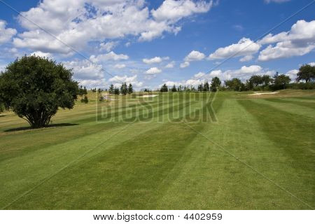 Fairway Of A Beautiful Golf Course