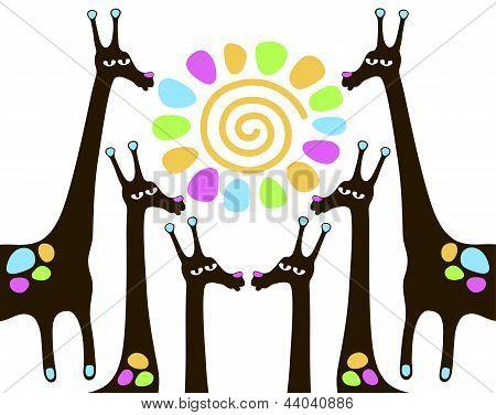 giraffes with sun