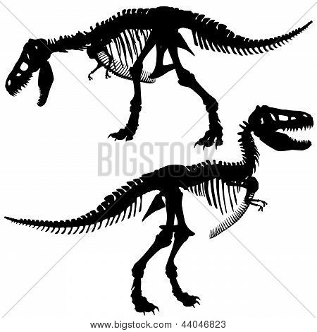 Editable vector silhouettes of the skeleton of a Tyrannosaurus rex dinosaur poster