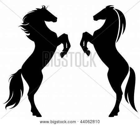 Horses Silhouettes