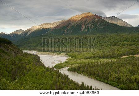 The Matanuska River Cuts Through Woods At Chugach Mountains Base