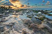 One of the reef Florida Keys islands at sunrise. Florida Keys USA. poster