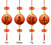 Chinese symbols on the lantern. Signs of the Zodiac. Rat rabbit ox pig. poster