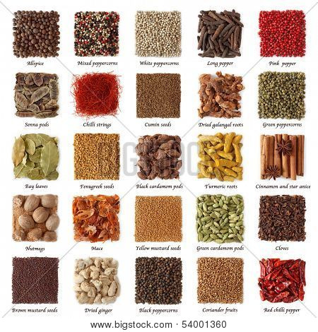 Indian spices collection with titles isolated on white background