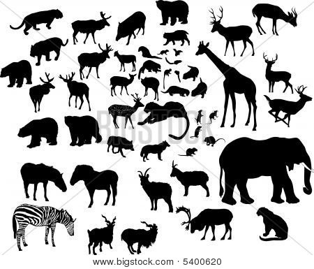 Large Animal Silhouettes Set