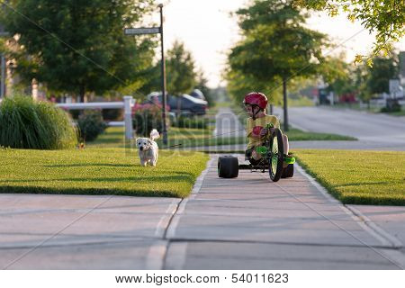 Young boy walking the dog with his tricycle on the nicely cut grasses in their neighborhood poster