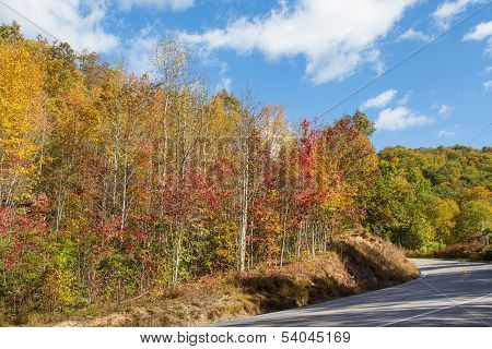 Blueridge Parkway In North Carolina