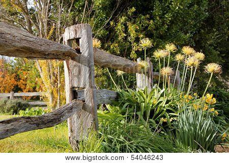 A Piece Of The Garden