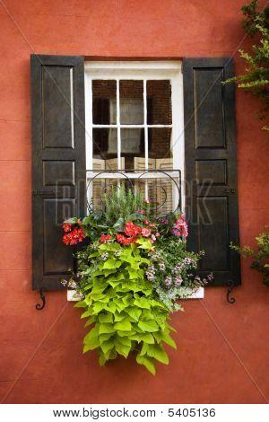 Windowbox N Charleston