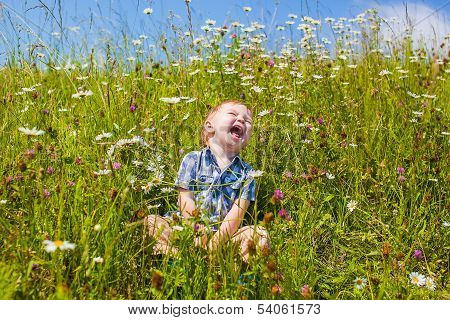 A Boy Sits Next To The Flowers And Laughs