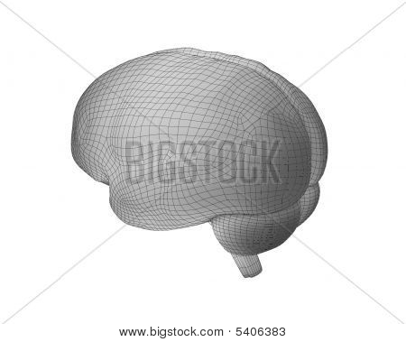 Brain 2 Wdiff