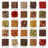 Indian spices collection with titles isolated on white background poster
