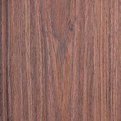 rosewood wood texture wood grain, natural rural tree background poster
