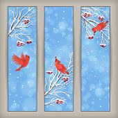 Vertical Christmas banners with birds Rowan tree branches and berries in frost snowflakes bokeh elements on blue abstract background. Snowy winter holiday landscape vector design poster