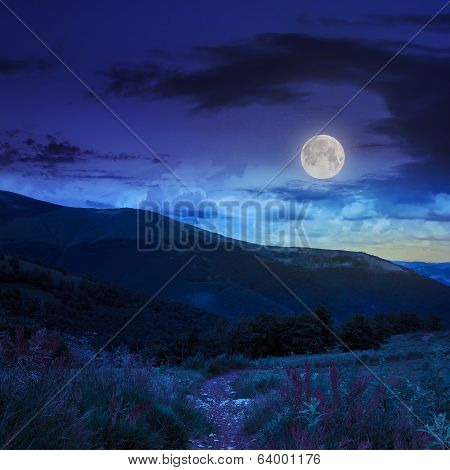 Morning Walks In Mountain At Night
