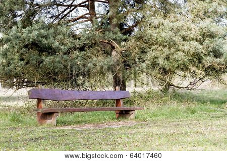 Outdoor Bench With Tree In Background