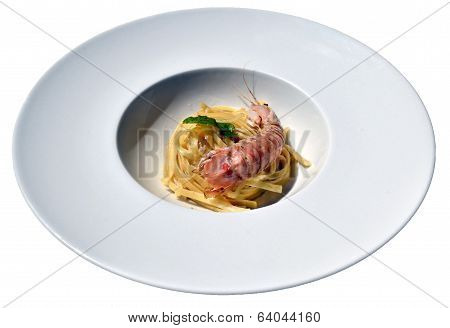 isolated dish of Italian pasta