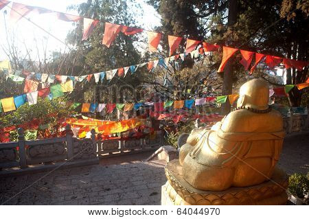 Outdoor Fat,smile Buddha In Temple ,lijiang  Dayan Old Town .