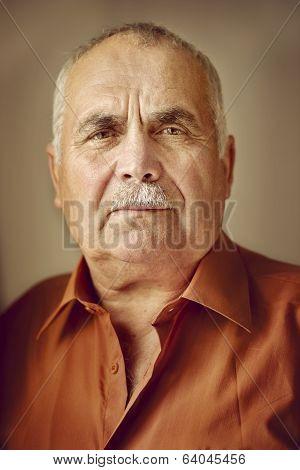 Portrait Of An Elderly Man With A Moustache