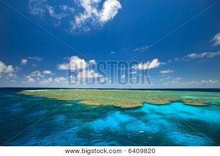 Clam Gardens In Great Barrier Reef Australia