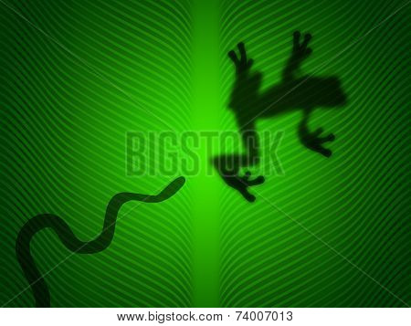 poster of Snake attack a tree frog on green leaf
