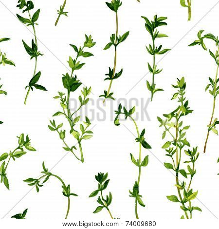 seamless pattern with branches of thyme