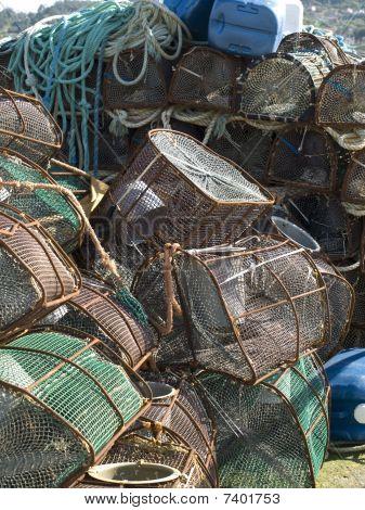 Traps For Shellfish
