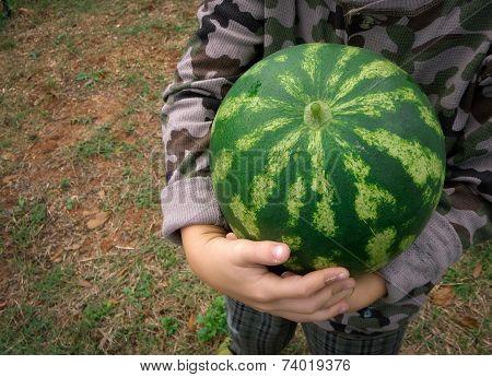 My Watermelon