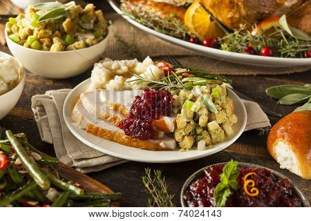 Homemade Thanksgiving Turkey On A Plate