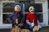 Halloween Decoration Dolls of Scarecrow Killer and Zombie in front of window of old house covered with spider web under sign WANTED poster