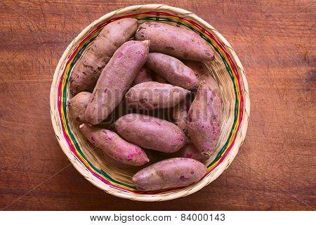 Raw Purple Sweet Potato