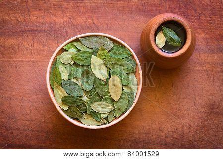 Dried Coca Leaves and Coca Tea