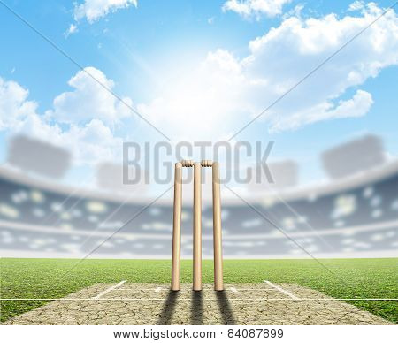 Cricket Stadium And Wickets
