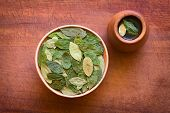 Overhead shot of dried coca leaves in bowl with fresh coca tea (mate de coca) on wood photographed with natural light poster