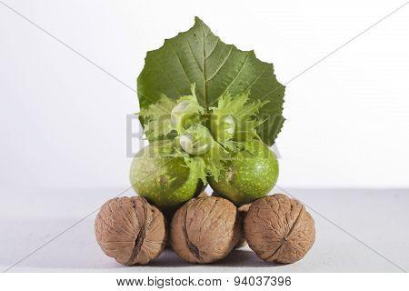 Nut Piramid