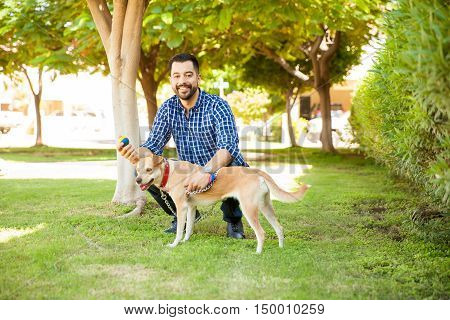 Man Playing Ball With His Dog