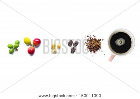 coffee cherries , coffee bean and coffee powder with black coffee in cup on white background