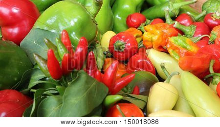 Red And Green Pepper For Sale