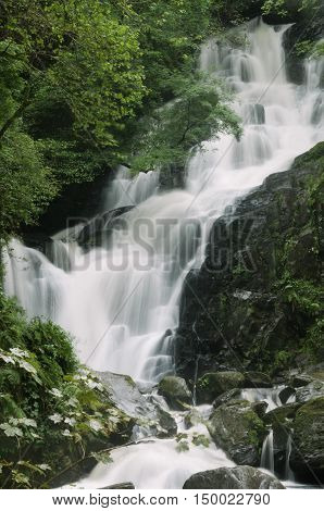 Torc Waterfall in Killarney National Park, County Kerry, Ireland, Europe