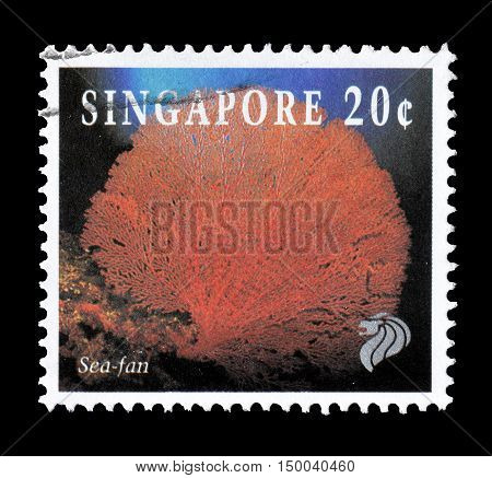 SINGAPORE - CIRCA 1994 : Cancelled postage stamp printed by Singapore, that shows Sea fan.