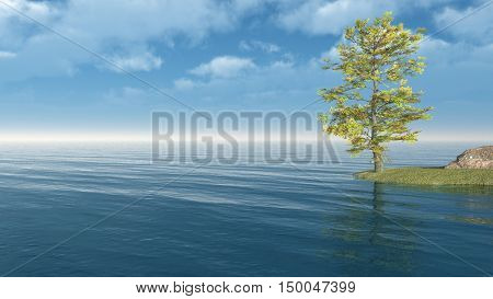 Alone Tree at sea beach.3D rendering;