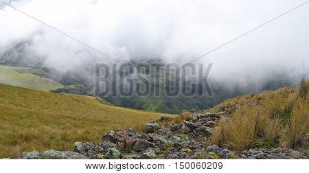 Fog in Ecuador. Old Indian Road near the Ecuadorian volcanoes. Alpine meadows.