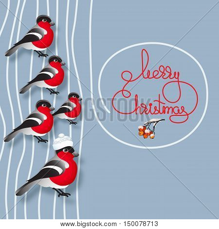 Vector illustration of bullfinches, rowan and handwritten words Merry Christmas on blue background.  Winter greeting card. Template for your design.
