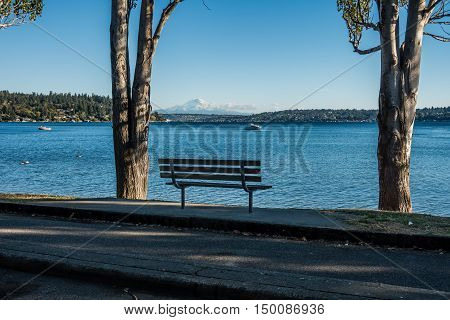 Mount Rainier is framed by two trees at Seward Park near Seattle.