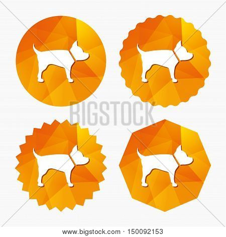 Dog sign icon. Pets symbol. Triangular low poly buttons with flat icon. Vector