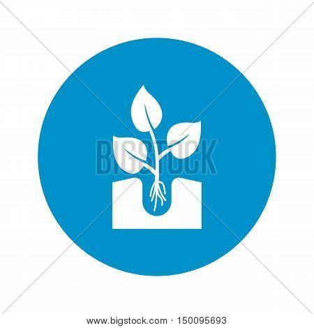 sapling icon on white background for web